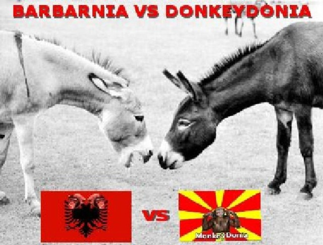 albania-monkeys-donkeydonia