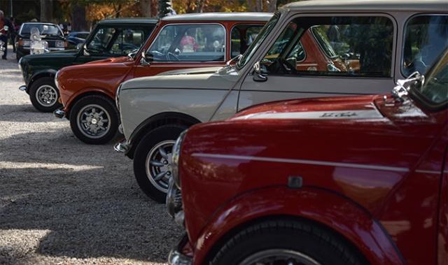 classic-cars-25