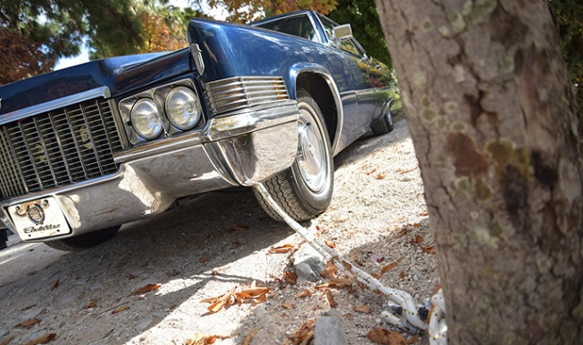classic-cars-26