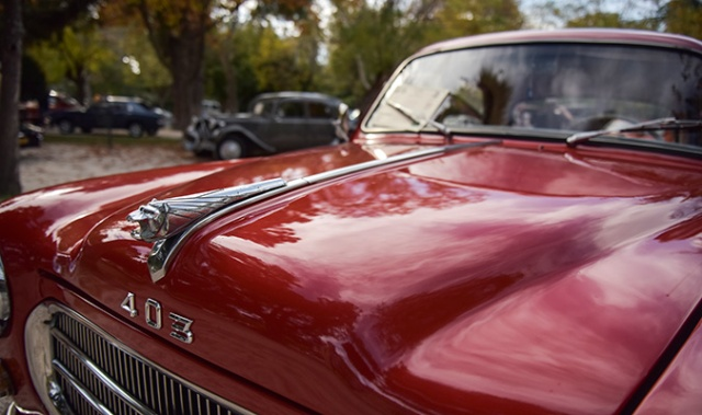 classic-cars-9